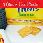 winter car picnic idea
