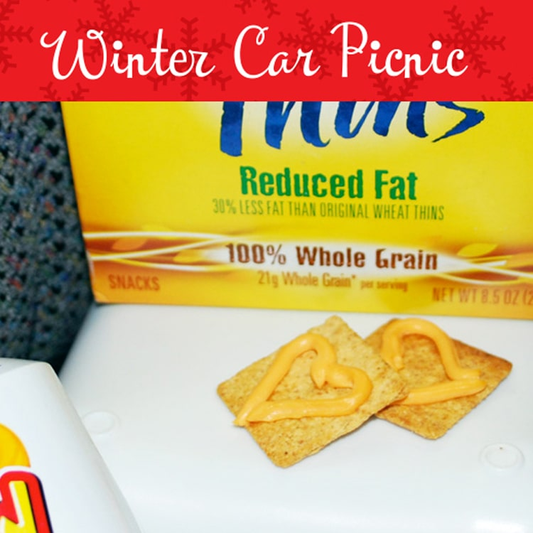 winter car picnic idea