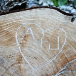 initials in a tree