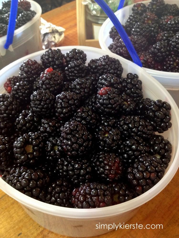 kinsey-kierste-berrybuckets