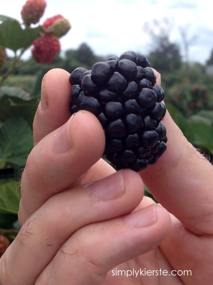 kinsey-kierste-blackberry