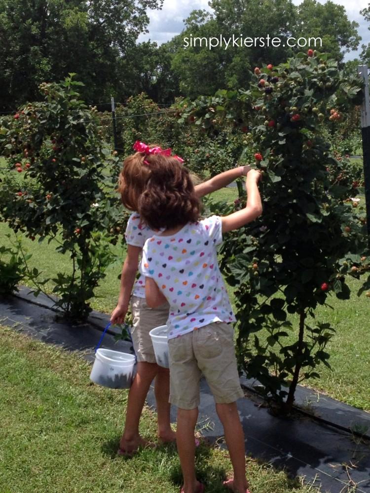 kinsey-kierste-twinsblackberry