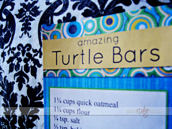 robin-bucket-list-turtle-barslogo